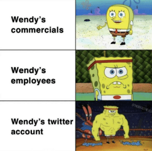 Best fries @ me: Wendy's  commercials  Wendy's  employees  @THEBREADTHEVES  Wendy's twitter  account Best fries @ me