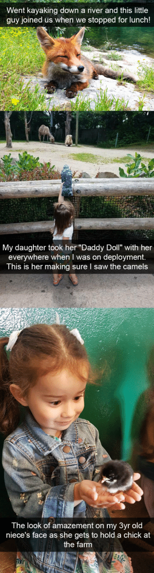 "Saw, Target, and Tumblr: Went kayaking down a river and this little  guy joined us when we stopped for lunch!   My daughter took her ""Daddy Doll"" with her  everywhere when I was on deployment.  This is her making sure I saw the camels   The look of amazement on my 3yr olod  niece's face as she gets to hold a chick at  the farm animalsnaps:Animal snaps"
