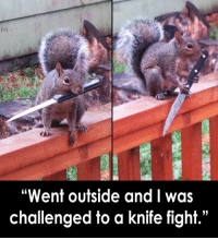 "Dank, 🤖, and Wot: ""Went outside and I was  challenged to a knife fight."" U wot m8?"