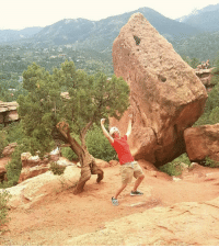 Ass, Family, and Colorado: Went to Colorado to visit some family, discovered a happy ass tree among the Garden of the Gods.