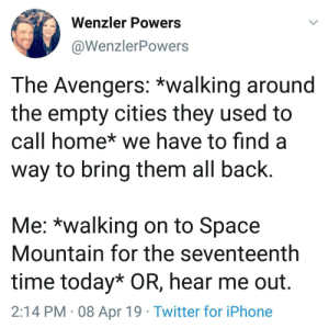 me_irl: Wenzler Powers  @WenzlerPowers  The Avengers: *walking around  the empty cities they used to  call home* we have to find a  way to bring them all back.  Me: *walking on to Space  Mountain for the seventeenth  time today* OR, hear me out.  2:14 PM 08 Apr 19 Twitter for iPhone me_irl