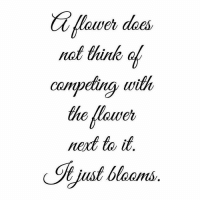 Memes, 🤖, and Meat: wer does  not think ol  competing wide  meat to it  just blooms, 🌺Be Great & Grateful