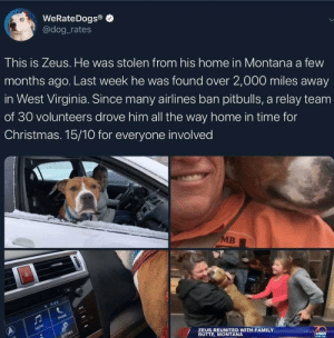 Home for the holidays: WeRateDogs®  @dog_rates  This is Zeus. He was stolen from his home in Montana a few  months ago. Last week he was found over 2,000 miles away  in West Virginia. Since many airlines ban pitbulls, a relay team  of 30 volunteers drove him all the way home in time for  Christmas. 15/10 for everyone involved  MB  048  PHONE  AUDIO  SETTINGS  ZEUS REUNITED WITH FAMILY  BUTTE, MONTANA Home for the holidays