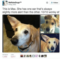 some of you are so fucking annoying im sorry: WeRateDogs  Follow  dog rates  This is Max. She has one ear that's always  slightly more alert than the other. 10/10 wonky af  1,489 5,617 some of you are so fucking annoying im sorry