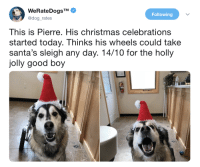 Hes the best: WeRateDogsTM  @dog_rates  Following  This is Pierre. His christmas celebrations  started today. Thinks his wheels could take  santa's sleigh any day. 14/10 for the holly  jolly good boy Hes the best