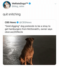 "(@dogrates): WeRateDogsTM  @dog_rates  quit snitching  CBS News@CBSNews  ""Gold digging"" dog pretends to be a stray to  get hamburgers from McDonald's, owner says  cbsn.ws/2ONic2e (@dogrates)"