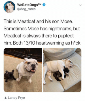 Animals, Dogs, and Memes: WeRateDogsTM  @dog_rates  This is Meatloaf and his son Mose.  Sometimes Mose has nightmares, but  Meatloaf is always there to puptect  him. Both 13/10 heartwarming as h*ck  & Laney Frye Dog Memes Of The Day 30 Pics – Ep53 #animalmemes #dogmemes #memes #dogs - Lovely Animals World