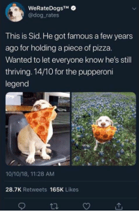 Pizza, Sid, and Got: WeRateDogsTM  @dog rates  This is Sid. He got famous a few years  ago for holding a piece of pizza.  Wanted to let everyone know he's still  thriving. 14/10 for the pupperoni  legend  10/10/18, 11:28 AM  28.7K Retweets 165K Likes