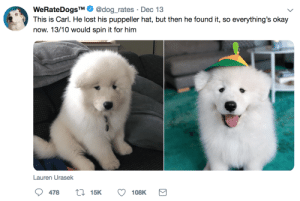 Lost, Okay, and Doggo: WeRateDogsTM  This is Carl. He lost his puppeller hat, but then he found it, so everything's okay  @dog_rates Dec 13  now. 13/10 would spin it for him  Lauren Urasek  115K  478  108K 16 Heartwarming Doggo Rates From WeRateDogs That'll Have You Sporting A Goofy Grin - I Can Has Cheezburger?