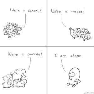 Found out the platypus is a solitary creature so I made this [OC]: We're a school  murder!  We're  We're  parade!  a  I am alo ne  emonthlymammals Found out the platypus is a solitary creature so I made this [OC]