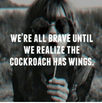 Memes, Brave, and Wings: WERE ALL BRAVE UNTIL  WE REALIZE THE  COCKROACH HAS WINGS