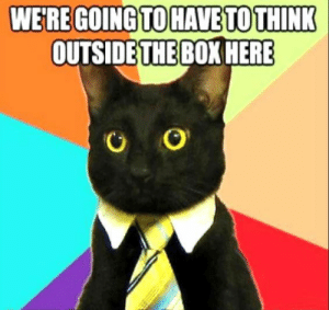 25 Business Cat Memes #sayingimages #businesscatmemes #businesscat #memes #funnymemes: WE'RE GOING TO HAVE TO THINK  OUTSIDE THE BOX HERE 25 Business Cat Memes #sayingimages #businesscatmemes #businesscat #memes #funnymemes