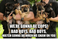 gnaw: WERE GONNA BE COPS!  BAD BOYS, BAD BOYS,  WATCH GONNA DOWHEN WE GNAW ON YOU