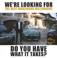 Click, Memes, and Business: WE'RE LOOKING FOR  THE NEXT MARIJUANA MILLIONAIRE  DO YOU HAVE  WHAT IT TAKES? SPONSORED: Are you The Next Marijuana Millionaire™? @BigMike is ready to give you this once-in-a-lifetime opportuninty! It's your idea, your business, and it's @BigMike personally mentoring you and giving you all of the resources you need to succeed. Click the link in his bio to sign up.