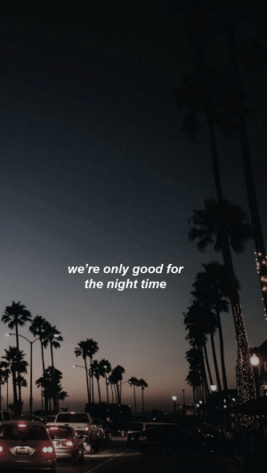 Good, Time, and For: we're only good for  the night time