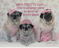 Right??!! :P <3 <3 <3  ~Zoe Elizabeth, Maddie Kathryn and Theodora Grace <3 <3 <3  Hey friends, we only have a few fundraisers left...While calendar supplies last :)  Let's raise as much as we can for pugs in need!!! TODAY and tomorrow 100% of calendar PROFITS will be donated to Ohio Pug Rescue!! BUY NOW->> www.grettasgirls.com Help OHIO PUG RESCUE with $8 of every calendar, get a year full of puggie laughs AND get a FREE St. Patrick's Day card!!! A huge thanks to our friends at Ohio Pug Rescue and thank YOU all, who do so much to support and love pugs! Warmest hugs, The P+K family: We're PRETTY sure...  that Cupcakes taste  as good as  Skinny feels!  Girls  by Pugs and Kisses Right??!! :P <3 <3 <3  ~Zoe Elizabeth, Maddie Kathryn and Theodora Grace <3 <3 <3  Hey friends, we only have a few fundraisers left...While calendar supplies last :)  Let's raise as much as we can for pugs in need!!! TODAY and tomorrow 100% of calendar PROFITS will be donated to Ohio Pug Rescue!! BUY NOW->> www.grettasgirls.com Help OHIO PUG RESCUE with $8 of every calendar, get a year full of puggie laughs AND get a FREE St. Patrick's Day card!!! A huge thanks to our friends at Ohio Pug Rescue and thank YOU all, who do so much to support and love pugs! Warmest hugs, The P+K family