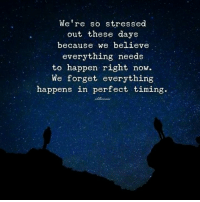 📷  Idillionaire: We're so stressed  out these days  because we believe  everything needs  to happen right now.  We forget everything  happens in perfect timing. 📷  Idillionaire