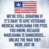 Memes, Marijuana, and Okay: WE'RE STILL DEBATING IF  IT'S OKAY TO GIVE VETERANS  MEDICAL MARIJUANA FOR PTSD  YOU KNOW, BECAUSE  MARIJUANA IS DANGEROUS  UNLIKE THE WAR THE  WERE JUST IN (LC)