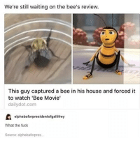 hihi: We're still waiting on the bee's review.  This guy captured a bee in his house and forced it  to watch 'Bee Movie'  daily dot.com  elphabaforpresidentofgallifrey  What the fuck  Source: elphabaforpres hihi