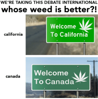 Dank, Dope, and Weed: WE'RE TAKING THIS DEBATE INTERNATIONAL  whose weed is better?!  DANK  Welcome  To California  california  Welcome  To Canada  canada The battle continues @dope_weed_photos