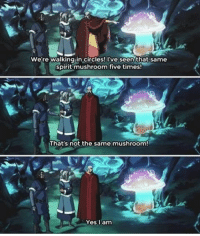 The legend of korra is amazing But my lasertag team is better ;): We're walking in circles! I've seen that same  spirit mushroom five times  That's not the same mushroom  Yes I am The legend of korra is amazing But my lasertag team is better ;)