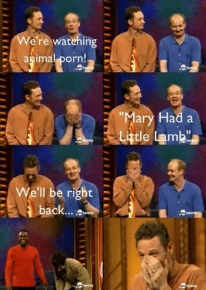 """Porn, Today, and Lamb: -We're watehing  apima! porn!  ar  ad a  Little Lamb""""  I1  : We'll be right  8  ack... t Started watching this show again. Cracks me up even today."""