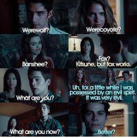 Memes, Teen Wolf, and Spirit: Werewolf?  Werecoyote?  Fox?  Kitsune, but fox works.  Banshee?  Uh, for a lie while I was  possessed by an evil spirit  if was very evil.  What are y  TEENWOLFBANE  What are you now?  Beiter? 4x04 probably one of the most iconic and funniest teen wolf moments of all time. one of my favorite scenes too. 😂 - QOTD: scott or liam's pack?