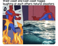 Me_irl: West coast and East coast niggas  laughing at each others natural disasters Me_irl