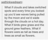 Waves, Birds, and Flowers: wethinkwedream:  What if clouds and lakes switched  spots and every time you looked  up you'd see waves being pulled  by the moon and we'd wade  through the clouds on a hot day.  What if birds grew grass and the  ground grew feathers. What if  flowers were as tall as trees and  trees as small as flowers. i'll have whatever they're having https://t.co/fGaEAFR19t