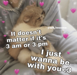 Here ya go get another wholesome meme: @wh.lesome  It doesn't  matter if it's  3 am or 3 pm  I just  wanna be  with you<3 Here ya go get another wholesome meme