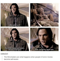 Memes, Movies, and Regret: Wha-what is it?  You think maybe you could  Yeah. I'm gonna regret this.  tell me from here?  Casey2y5:  The Winchesters are what happens when people in horror movies  become self-aware
