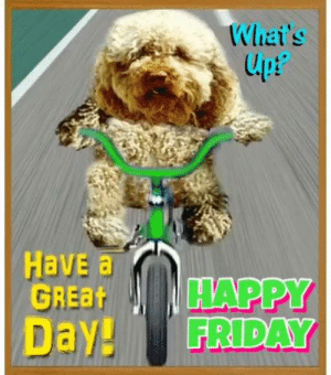 Happy Friday Dog gone it have a awesome day!: Whai's  lpt  upP  Have a  GREBHAPPY  Day! FRIDAY Happy Friday Dog gone it have a awesome day!