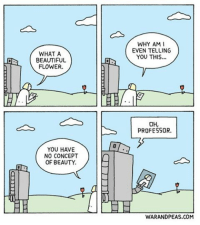 * literally sparks flying * comic webcomic warandpeas cartoon comicstrip comics robotics robot ai valentines valentine relationship yonkoma lol humour funny love beauty: WHAT A  BEAUTIFUL  FLOWER.  YOU HAVE  NO CONCEPT  OF BEAUTY.  WHY AM I  EVEN TELLING  YOU THIS...  OH,  PROFESSOR.  WARANDPEAS.COM * literally sparks flying * comic webcomic warandpeas cartoon comicstrip comics robotics robot ai valentines valentine relationship yonkoma lol humour funny love beauty