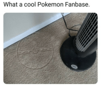 Pokemon, Cool, and Irl: What a cool Pokemon Fanbase. me_irl
