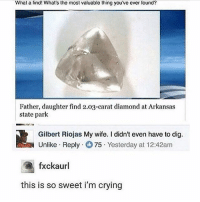 Crying, Memes, and Arkansas: What a find! What's the most valuable thing you ve ever found?  Father, daughter find 2.03-carat diamond at Arkansas  state park  Gilbert Riojas My wife. I didn't even have to dig.  Unlike Reply 75. Yesterday at 12:42am  fxckaurl  this is so sweet i'm crying TOO PURE