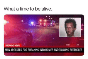 Valuables werent the only thing this dude wanted. by ByeByeFlutterPie FOLLOW HERE 4 MORE MEMES.: What a time to be alive  BREAKING NEWS  MAN ARRESTED FOR BREAKING INTO HOMES AND TICKLING BUTTHOLES Valuables werent the only thing this dude wanted. by ByeByeFlutterPie FOLLOW HERE 4 MORE MEMES.