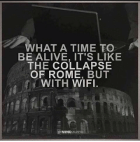 what a time to be alive: WHAT A TIME TO  BE ALIVE, IT'S LIKE  THE COLLAPSE  OF ROME, BUT  WITH WIFI.  蹑  MINDN