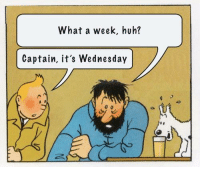 Wednesday: What a week, huh?  Captain, it's Wednesday