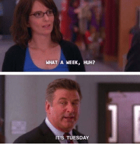 literally me rn: WHAT A WEEK, HUH?  IT'S TUESDAY literally me rn