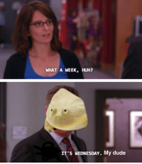me_irl: WHAT A WEEK, HUH?  IT'S WEDNESDAY. My dude me_irl