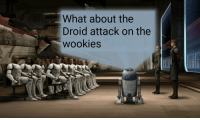 droid: What about the  Droid attack on the  WOOKIes