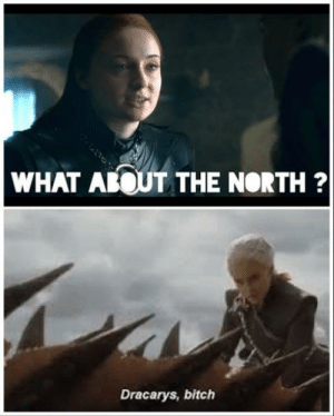 Problem solved.: WHAT ABOUT THE NORTH?  Dracarys, bitch Problem solved.