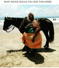 Advice, Memes, and Horse: WHAT ADVICE WOULD YOU GIVE THIS HORSE