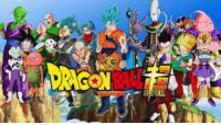 What age did you started watching dragon ball Z ?: What age did you started watching dragon ball Z ?