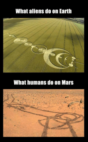 Aliens: What aliens do on Earth  What humans do on Mars
