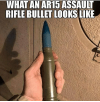 America, Friends, and Guns: WHAT AN AR15 ASSAULT  RIFLE BULLET LOOKS LIKE . www.tacticalgunners.com ✅ Double tap the pic ✅ Tag your friends ✅ Check link in my bio for badass stuff - american veteran veterans america gun guns 2a secondamendment 2ndamendment gunrights firearm firearms rifle ar15 humor meme