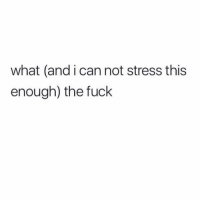 Fuck, Girl Memes, and Stress: what (and i can not stress this  enough) the fuck Constant inner dialogue