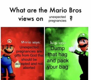 God, Memes, and Mario: What are the Mario Bros  views on  unexpected 2  pregnancies  Mario says uigi says  Unexpected Dump  gifts from God that that hag  pregnancies are  should be|and pack  abortedyour bag  accepted and not Save r/memes from normies with my shitty stolen memes