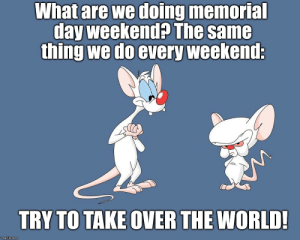 WEEKEND PLANS - Imgflip: What are we doing memoria  day weekend? The same  thing we do every weekend;  TRY TO TAKE OVER THE WORLD!  imgflip.conm WEEKEND PLANS - Imgflip