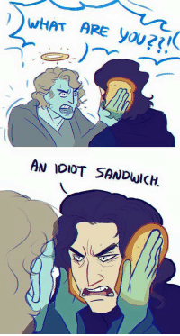 what ares: WHAT ARE yoU  AN IDIOT SANDUICH.